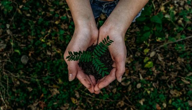 energia-verde-razones-escoger